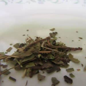 Ursa Uvi Tea